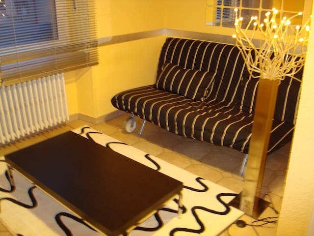 Studio in Bonnevoie available from July