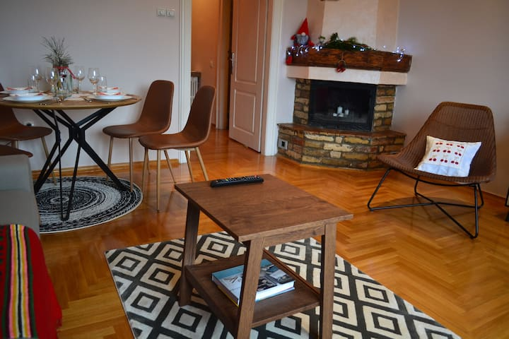 Spacious 1 BR in the heart of city - apt Nicola's