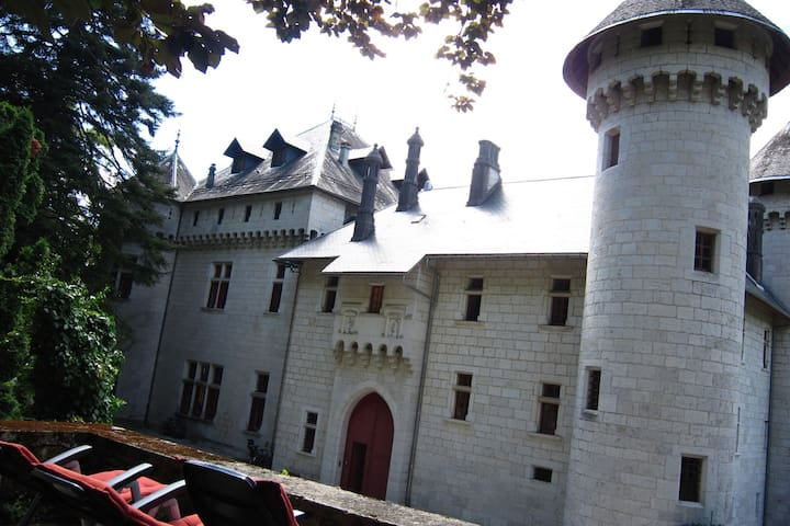 Lavish Castle in Serrières-en-Chautagn with Pool