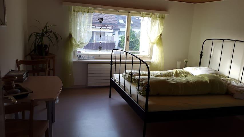 Gemütliche Wohnung nahe des Rheinfalls - Dachsen - Apartment