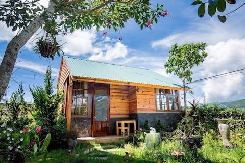 Wooden room in garden