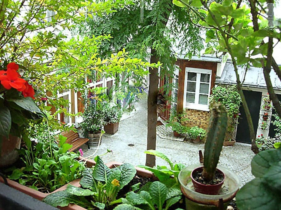 This is the pretty courtyard.