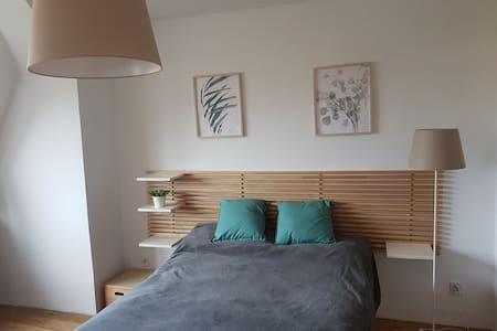 Komfortowy pokój w centrum Torunia