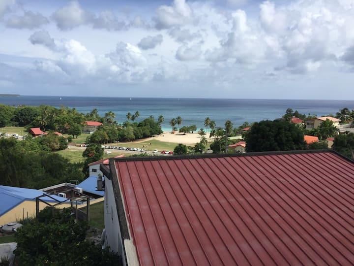 Vue panoramique sur la Anse Figuier