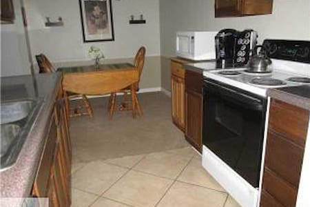 Spacious apartment near downtown EL and MSU - 東蘭辛(East Lansing)