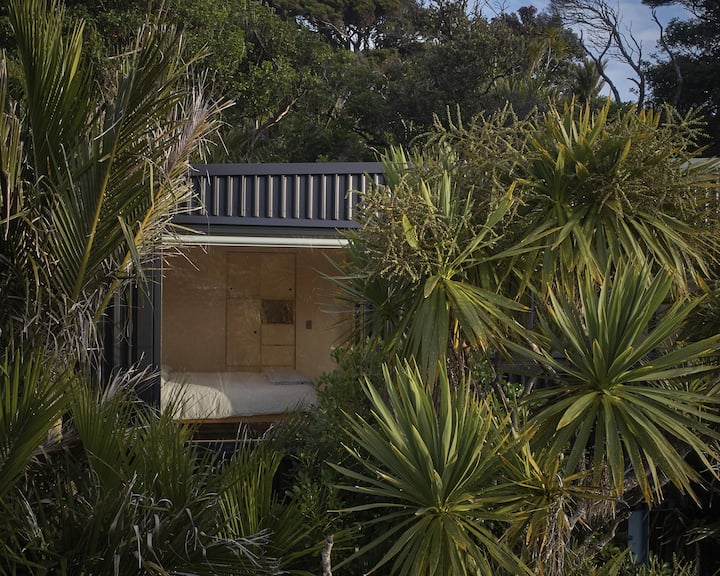 Piha house in the trees