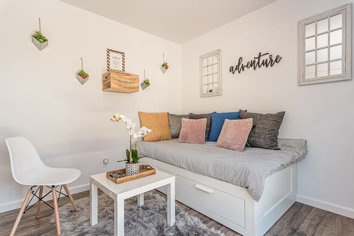 Bonus Living/Bedroom#3 with Twin sleeper bed