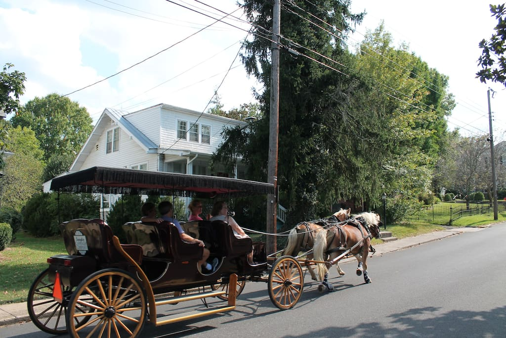Carriage rides pass by daily