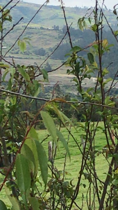 Finca vacacional sierra ecuatoriana