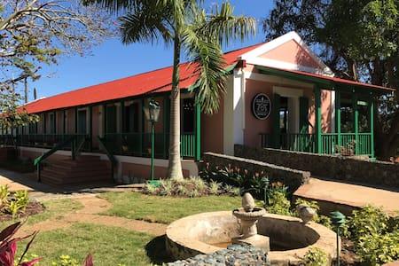 Hacienda Juanita - Robusta (#1) - Maricao - Hotel butik