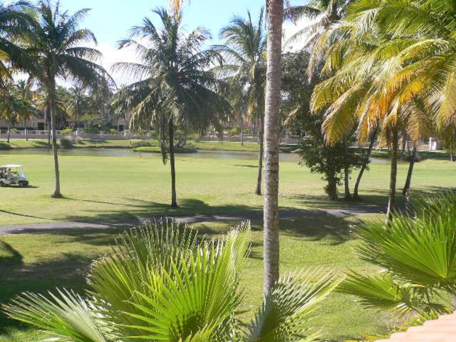 Our view from the balcony, Hole 6 Palm Course, Tennis Center in the background