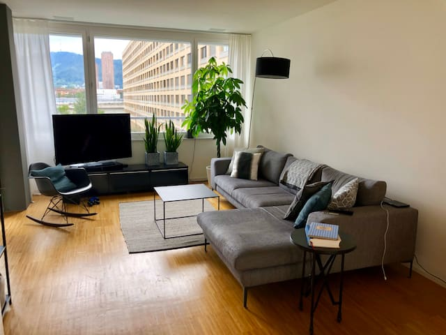 FURNISHED, TEMPORARY: 2½ ROOM APARTMENT IN ZÜRICH