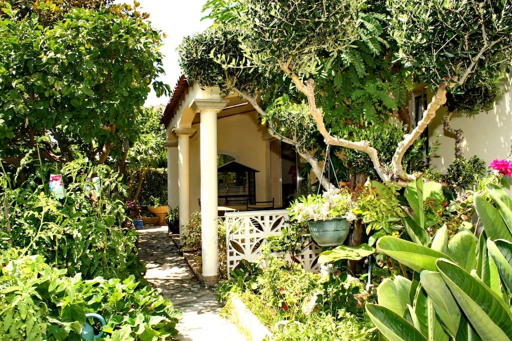 Terrasse vue du jardin / Terrace from garden view
