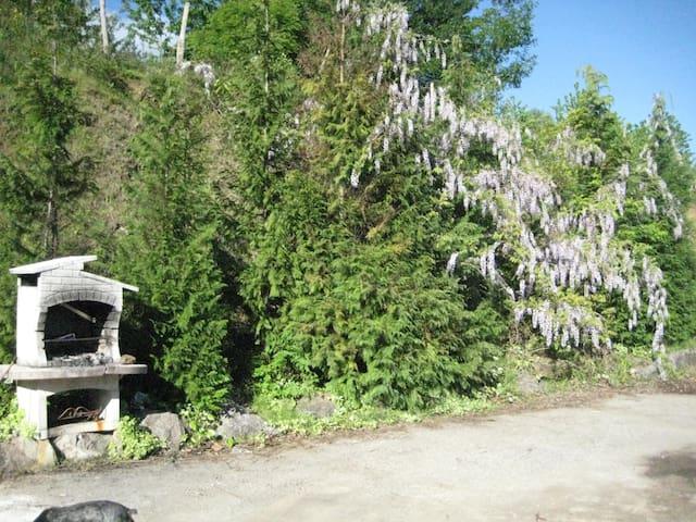 Casa Rural Patxi Errege - Elorrio - Dům pro hosty