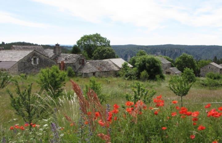 Gîte sur le Causse Méjean  en Lozère