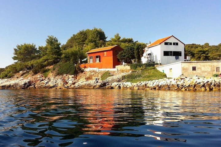 Studio flat near beach Savar, Dugi otok (AS-909-a) - Savar - Andre