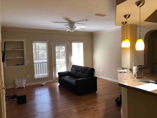 Atlanta Apartment - CLOSE TO LENOX AND PHIPPS!!