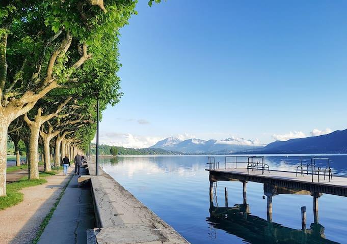 Appartement 35 m² bord de lac Aix les Bains (73)