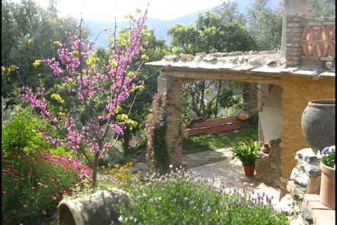 "Country house ""Cañuelo"" – Alpujarra"