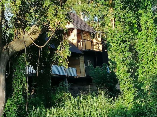 Hornbill river camp