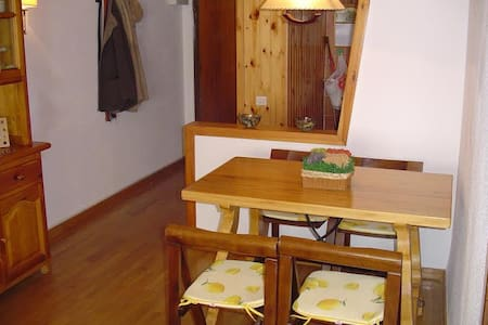 Very nice apartment in the Pyrenees - Alp