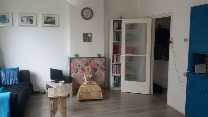 Nice cosy appartment in Amersfoort - Amersfoort - Apartment