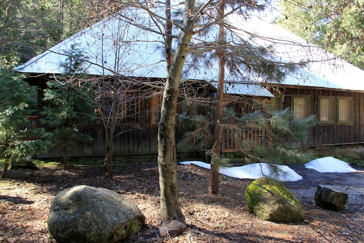 Cabin in the Pines - Oakhurst - Maison
