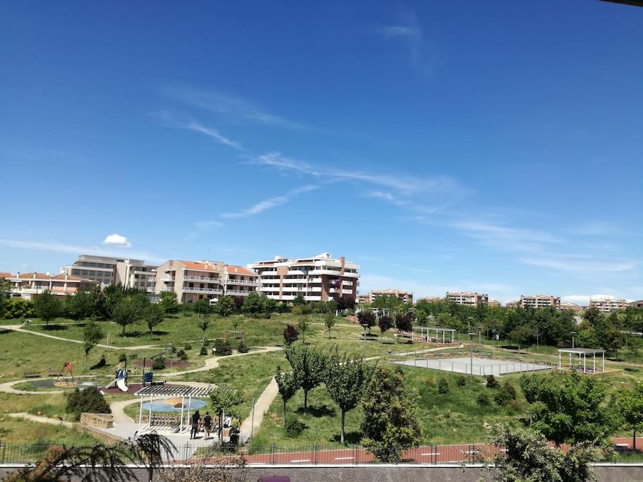 Colto Maltese's park