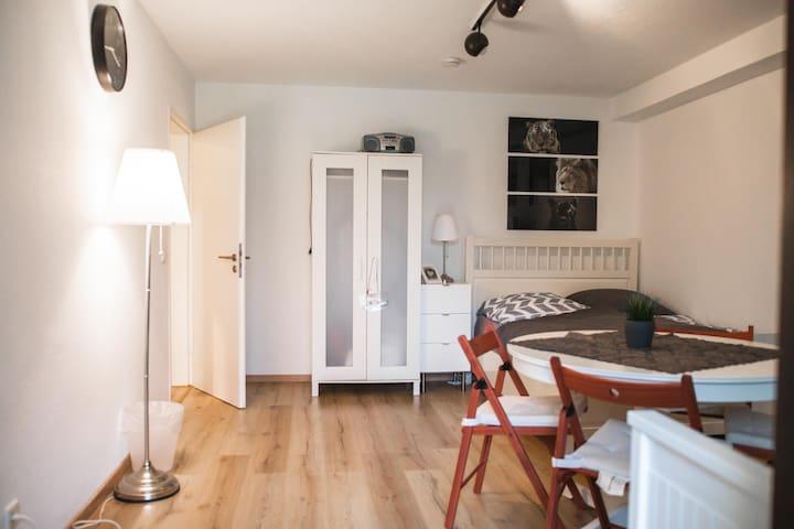 Nice Apartament in Heidelberg