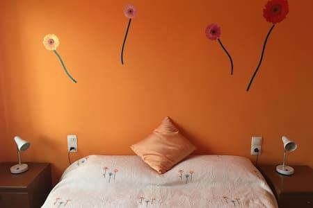 Apartment acollidor - Sant Joan de les Abadesses - Lägenhet