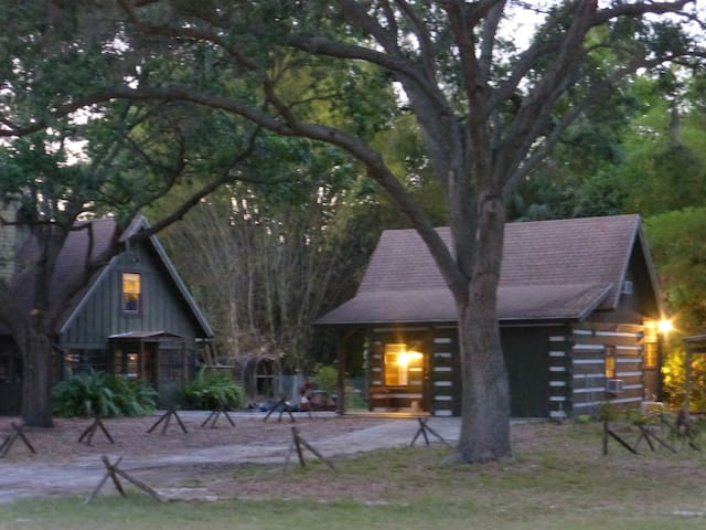 Log Cabin with a Canoe - Palmetto