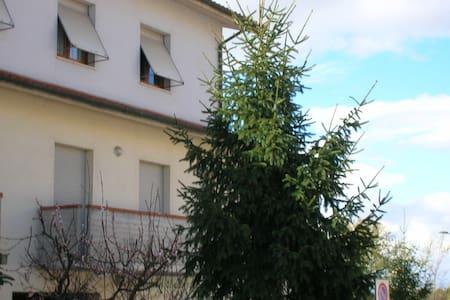 "B&B ""Gili"" Camera Air  con balcone Castelfidardo - Castelfidardo"