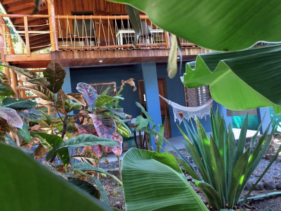 Apartment surrounded by garden with banana trees, palm trees, heliconia, papaya trees and a big agave