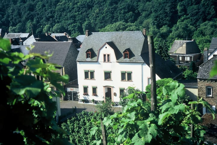 Old winegrower house up to 7 people on the Moselle