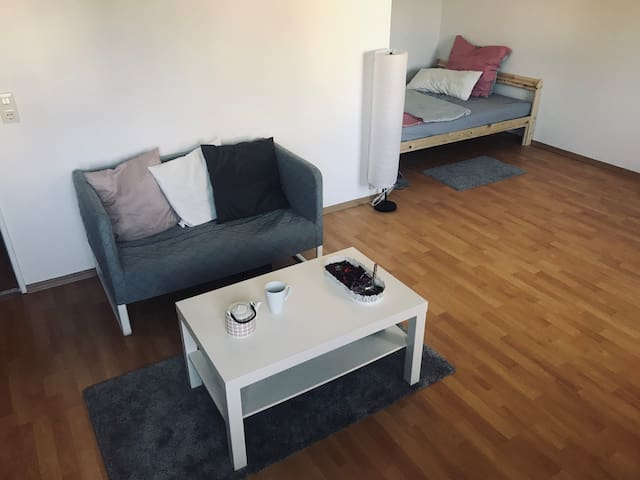 Studio apartment near Olympiapark and BMW museum