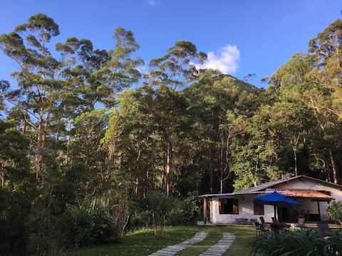 Casa Refúgio na Floresta