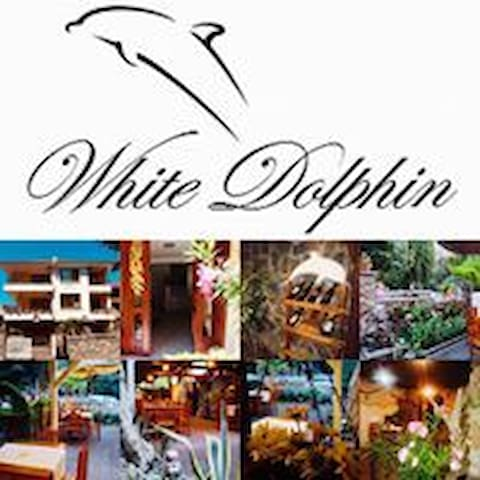 Guest House White Dolphin - Double Room 1