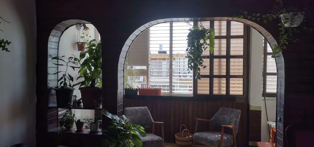 Cozy Jaffa Apartment (+Cat!)