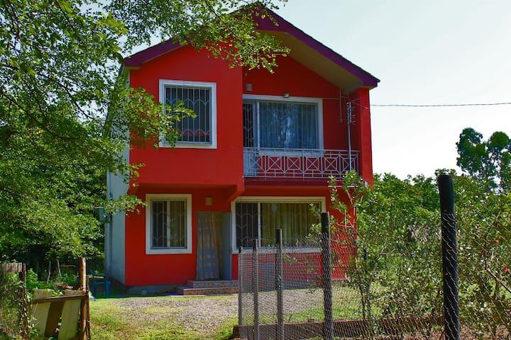 Helen Apartament shekvetili