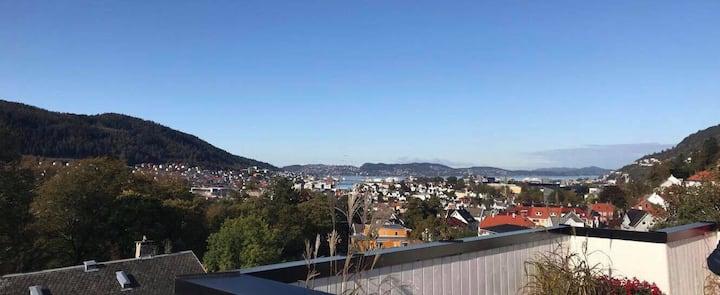 Modern apartment near Bergen city/mountains