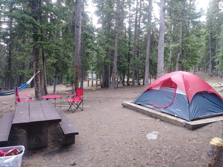 CAMPING. @Mt Evans Tent  campsite permits and gear