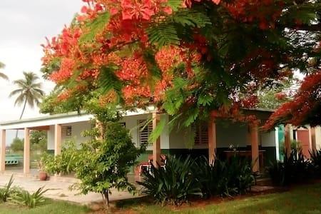 Villa D'Lirios Habitación 2