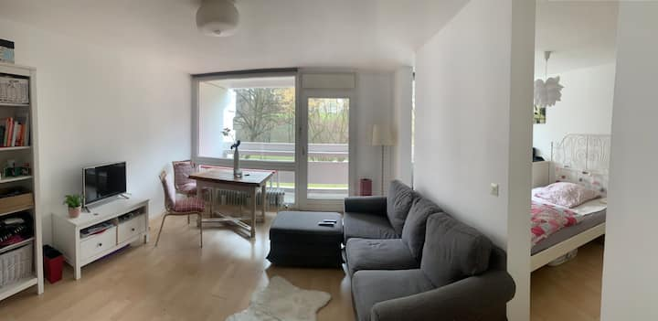 Cozy apartment right next to olympic park
