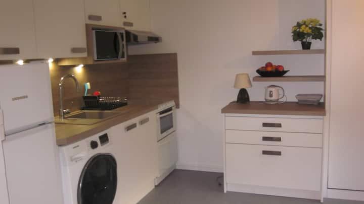 charmant appartement dans la vallee du Sancy
