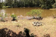 Lakeside Firepit and campsite