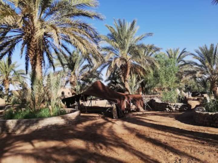 """Séjour """"comme à la maison"""" dans une oasis au Maroc"""