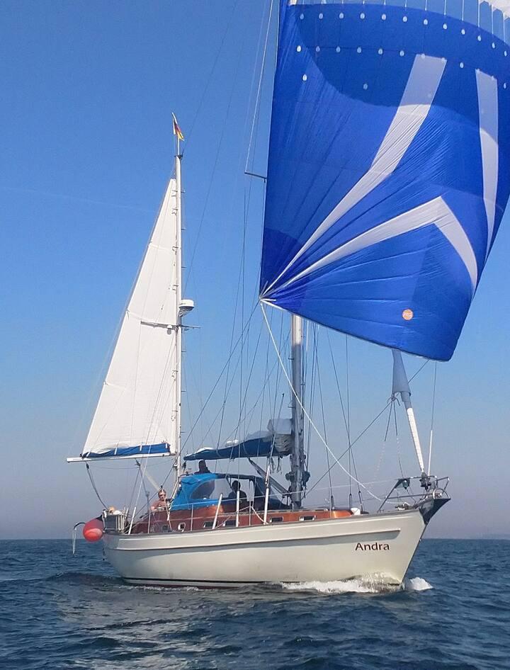 Traumurlaub auf 12 Meter Segelyacht auf der Ostsee