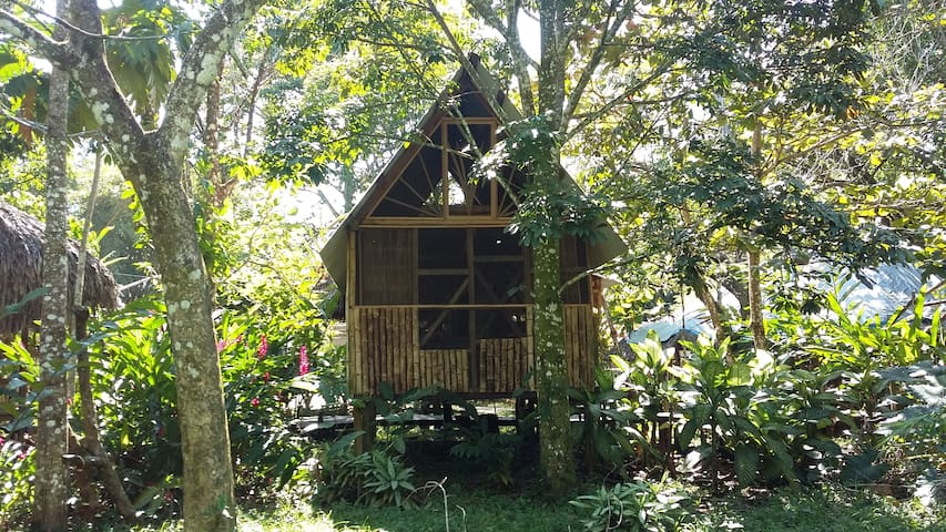 Rustic cabins in Palenque - Casa Bambutan - Palenque - Bed & Breakfast