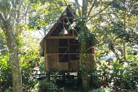 Rustic cabins in Palenque - Casa Bambutan - Palenque - Bed & Breakfast