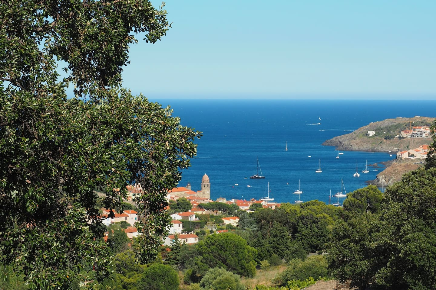 Collioure vu des collines